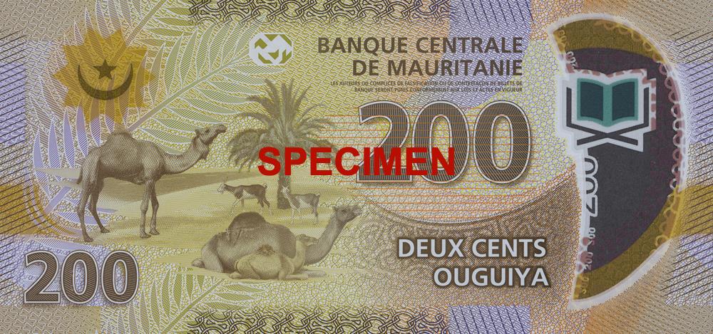 MRO 200